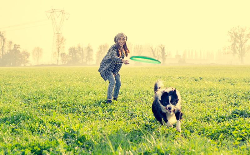 Giochi con il cane all'aperto
