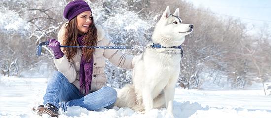 cane-ragazza-neve