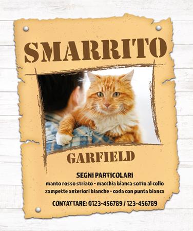gatto-scomparso-esempio-cartello-smarrito